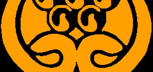 SAARC-Logo